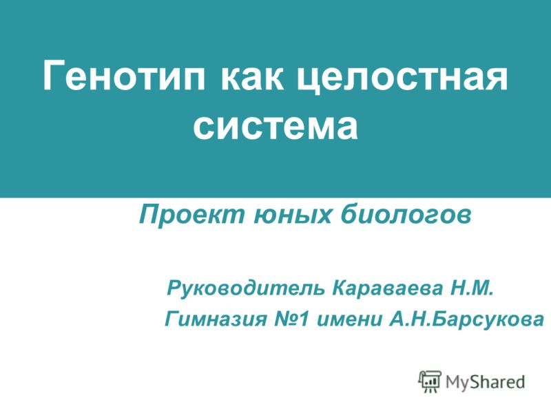 Генотип как целостная система Проект юных биологов Руководитель Караваева Н.М. Гимназия 1 имени А.Н.Барсукова