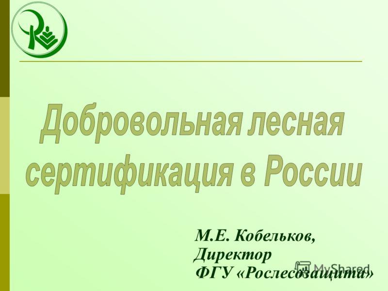 М.Е. Кобельков, Директор ФГУ «Рослесозащита»