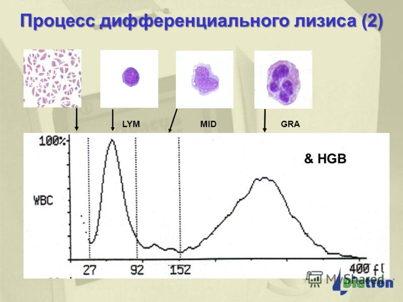 Процесс дифференциального лизиса (1) + Лизирующий реагент для дифференцировки PLT & RBC LYM MID GRN