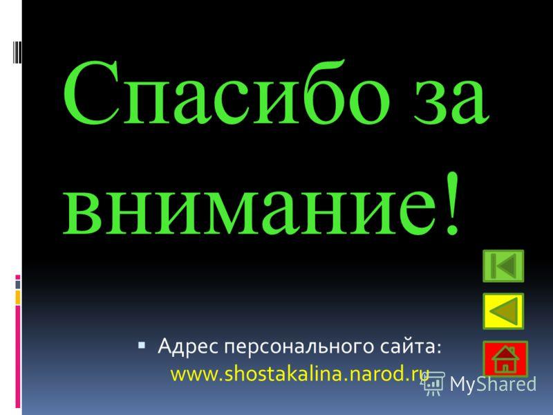 Спасибо за внимание! Адрес персонального сайта: www.shostakalina.narod.ru