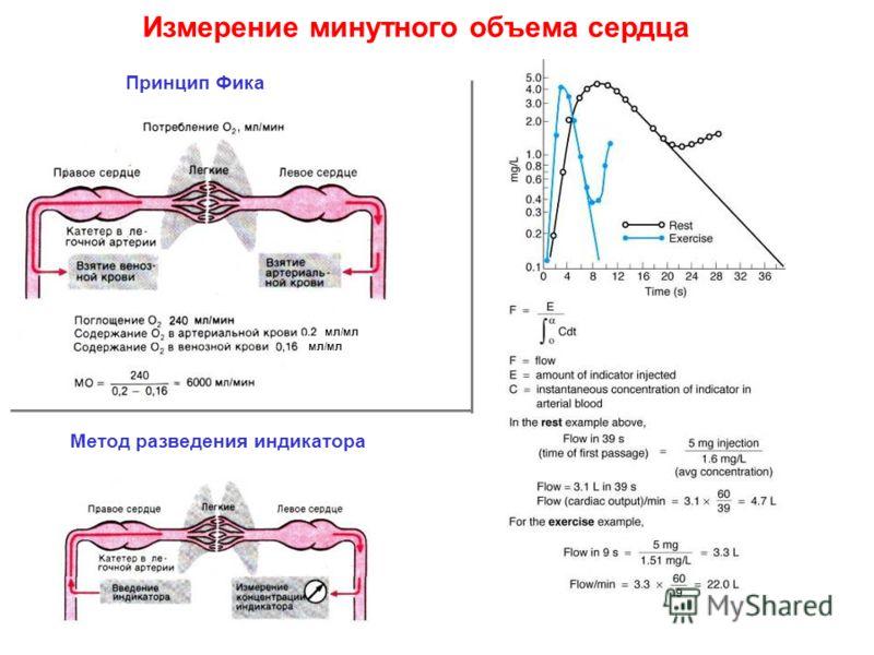 Измерение минутного объема сердца Принцип Фика Метод разведения индикатора Измерение минутного объема сердца мл/мл