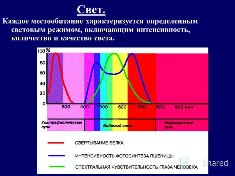 Свет. Каждое местообитание характеризуется определенным световым режимом, включающим интенсивность, количество и качество света.