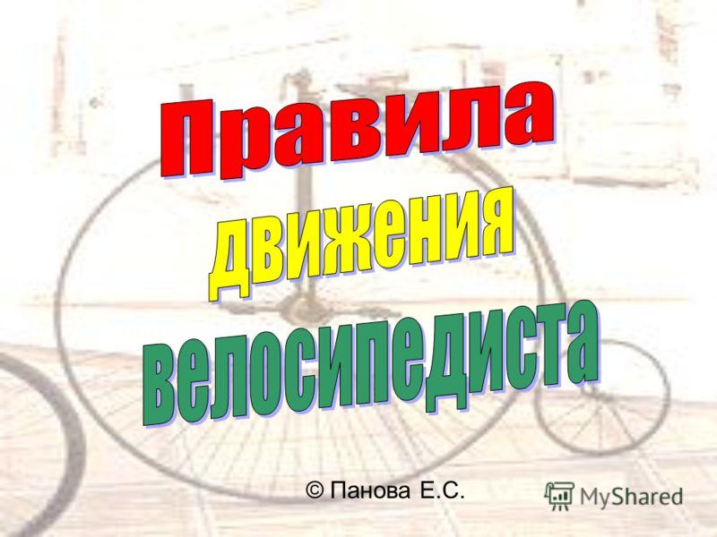 © Панова Е.С.