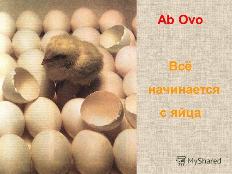 Ab Ovo Всё начинается с яйца