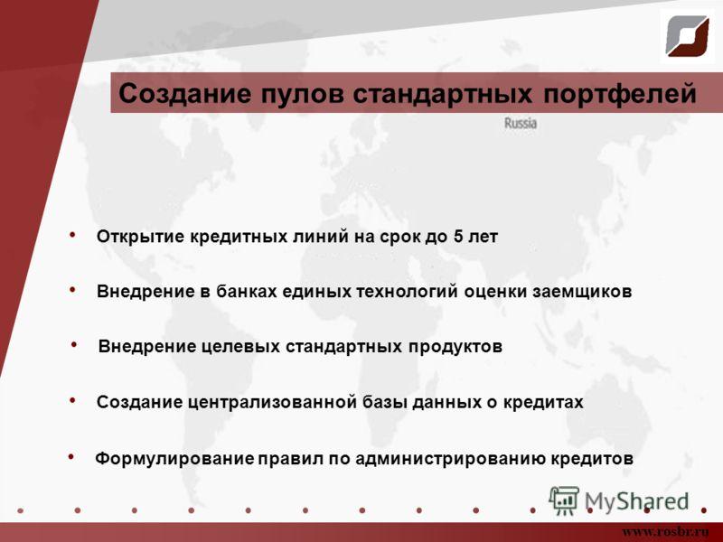 Создание пулов стандартных портфелей www.rosbr.ru Открытие кредитных линий на срок до 5 лет Внедрение в банках единых технологий оценки заемщиков Создание централизованной базы данных о кредитах Внедрение целевых стандартных продуктов Формулирование