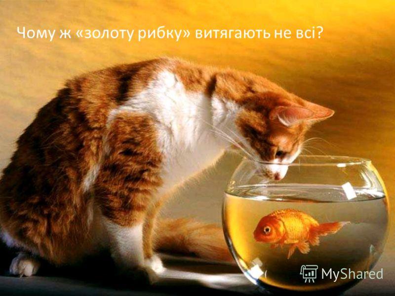 Чому ж «золоту рибку» витягають не всі?