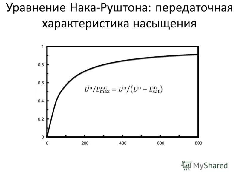 Уравнение Нака-Руштона: передаточная характеристика насыщения