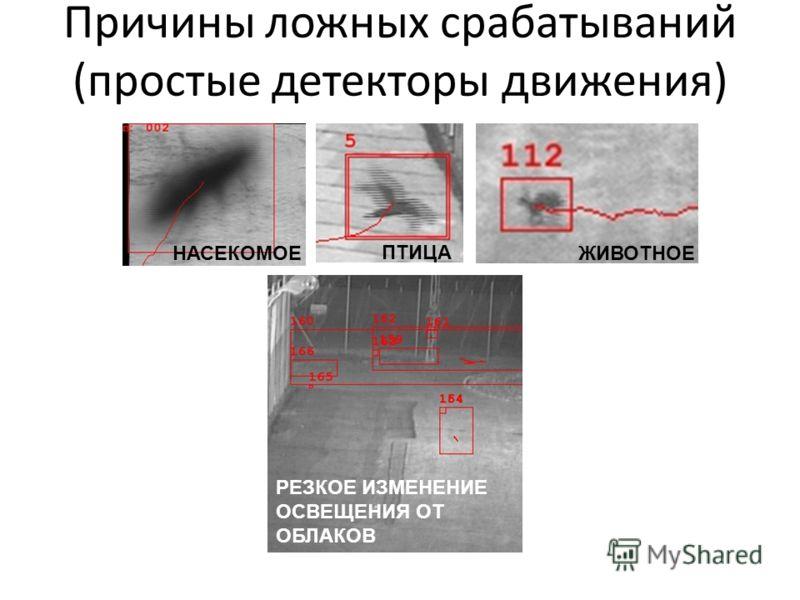 Причины ложных срабатываний (простые детекторы движения) РЕЗКОЕ ИЗМЕНЕНИЕ ОСВЕЩЕНИЯ ОТ ОБЛАКОВ НАСЕКОМОЕЖИВОТНОЕ ПТИЦА