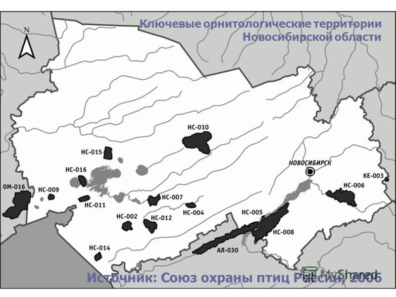 Ключевые орнитологические территории Новосибирской области Источник: Союз охраны птиц России, 2006