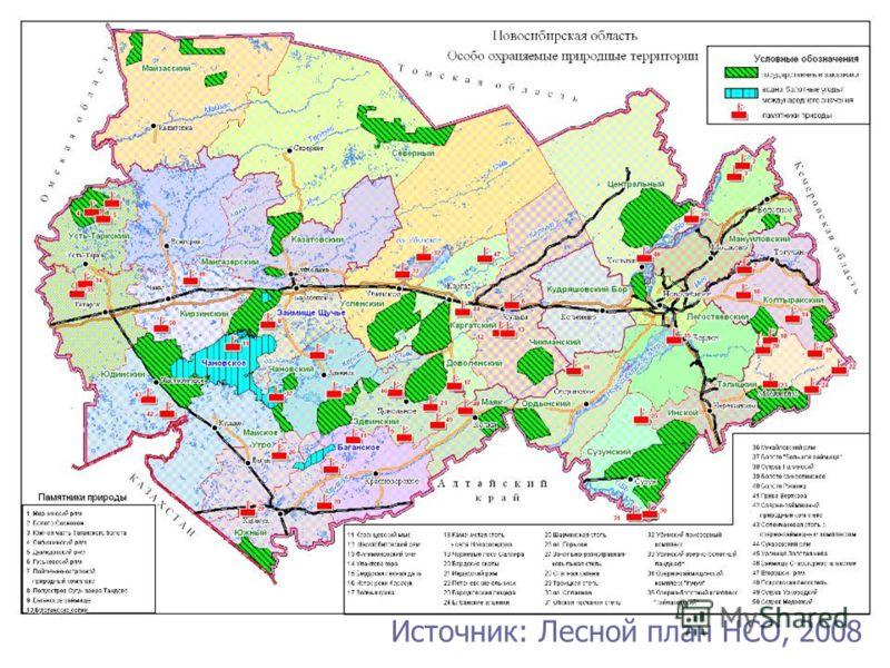 Источник: Лесной план НСО, 2008