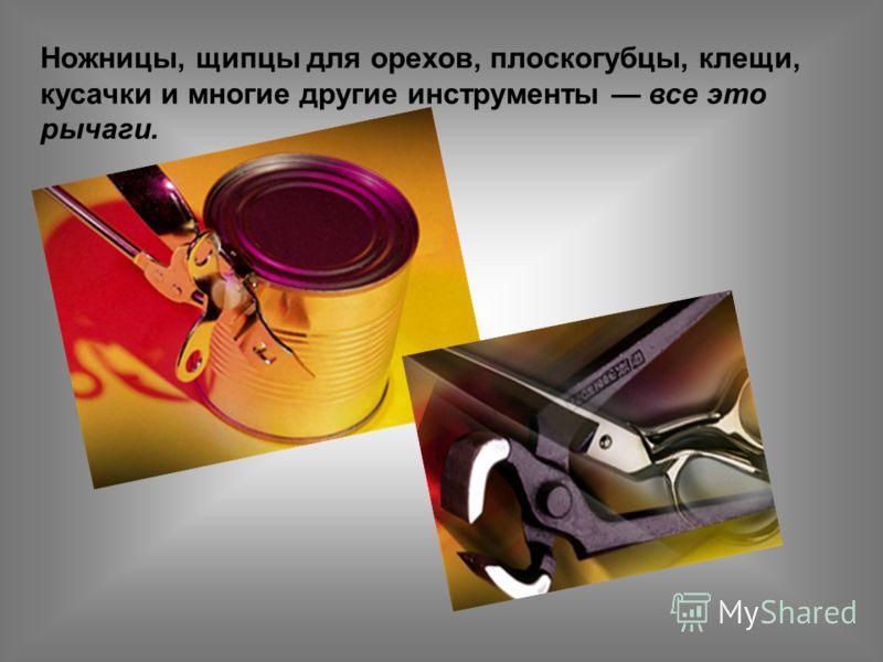 Ножницы, щипцы для орехов, плоскогубцы, клещи, кусачки и многие другие инструменты все это рычаги.