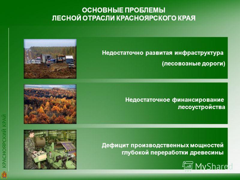 КРАСНОЯРСКИЙ КРАЙ ОСНОВНЫЕ ПРОБЛЕМЫ ЛЕСНОЙ ОТРАСЛИ КРАСНОЯРСКОГО КРАЯ Недостаточно развитая инфраструктура (лесовозные дороги) Недостаточное финансирование лесоустройства Дефицит производственных мощностей глубокой переработки древесины