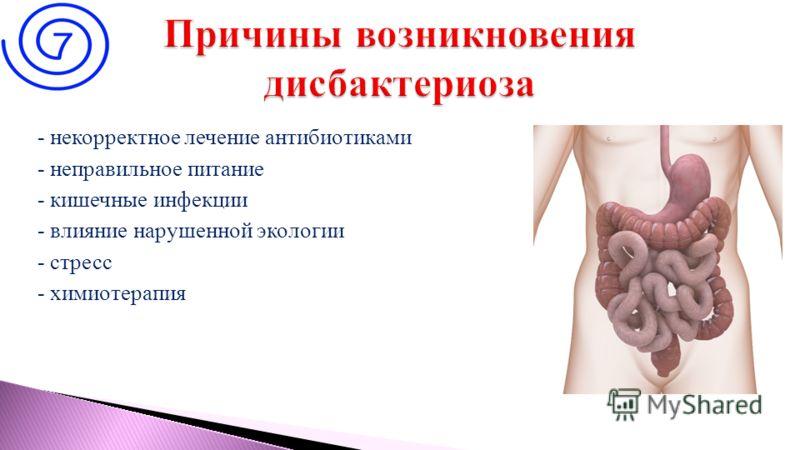 - некорректное лечение антибиотиками - неправильное питание - кишечные инфекции - влияние нарушенной экологии - стресс - химиотерапия 3