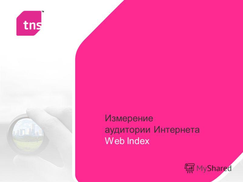Измерение аудитории Интернета Web Index