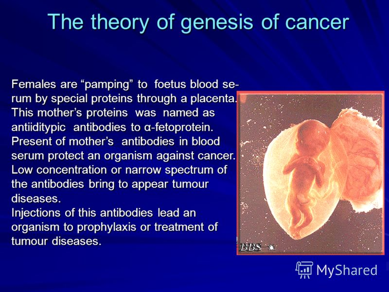 The theory of genesis of cancer Females are pamping to foetus blood se- rum by special proteins through a placenta. This mothers proteins was named as antiiditypic antibodies to α-fetoprotein. Present of mothers antibodies in blood serum protect an o