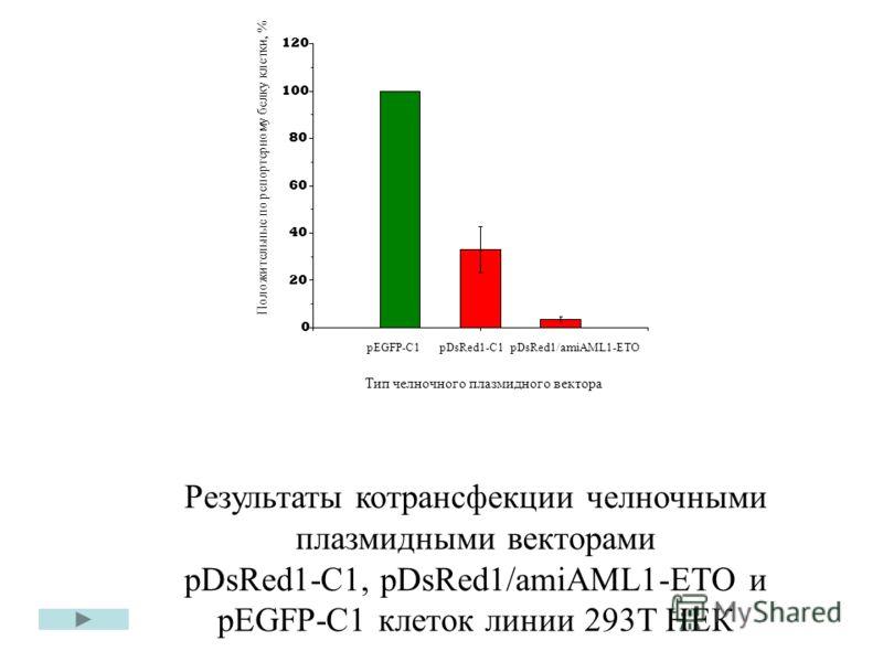 pEGFP-C1 pDsRed1-C1 pDsRed1/amiAML1-ETO 0.51.01.5 0 20 40 60 80 100 120 Тип челночного плазмидного вектора Положительные по репортерному белку клетки, % Результаты котрансфекции челночными плазмидными векторами pDsRed1-C1, pDsRed1/amiAML1-ETO и pEGFP