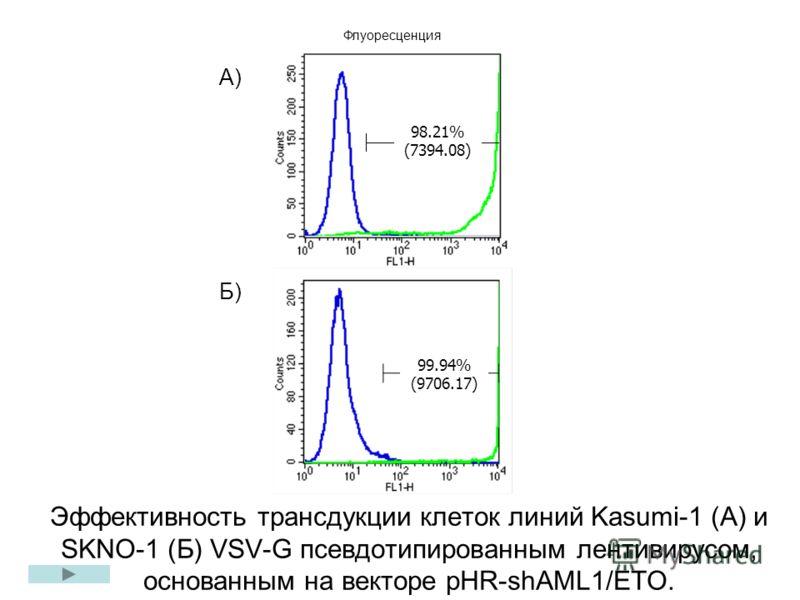 Эффективность трансдукции клеток линий Kasumi-1 (А) и SKNO-1 (Б) VSV-G псевдотипированным лентивирусом, основанным на векторе рHR-shAML1/ETO. Б) 99.94% (9706.17) 98.21% (7394.08) А) Флуоресценция