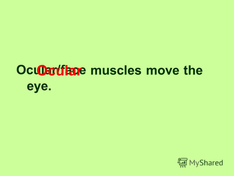 There are extra ocular muscles. 7/5 7