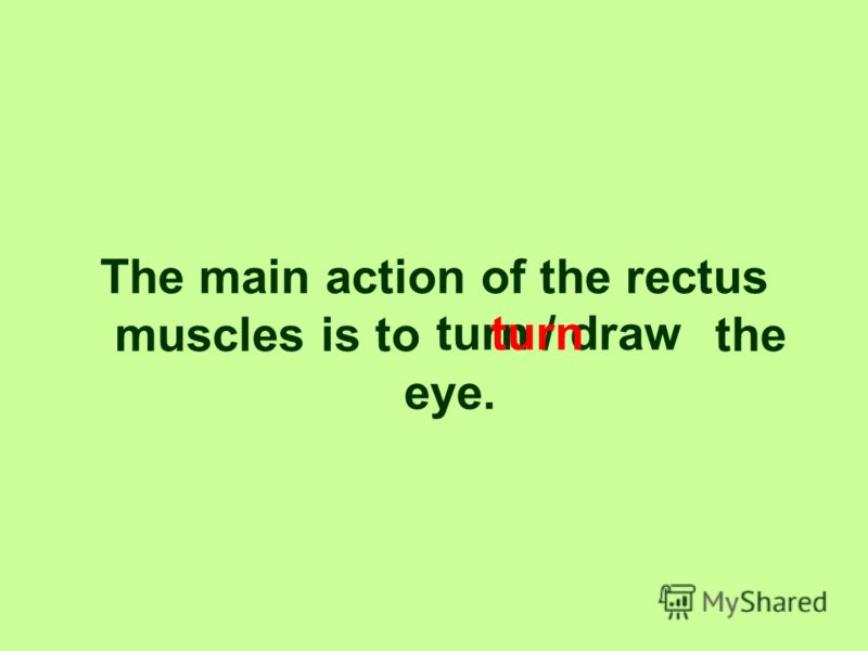 The optic nerve and the artery pass through the anulus tendineus/rectus muscle. anulus tendineus.