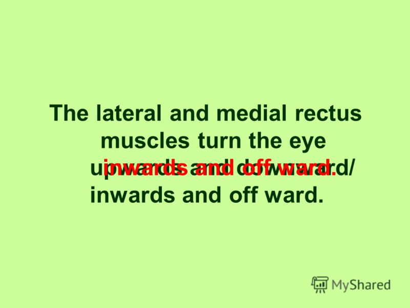 The superior and inferior rectus muscles turn the eye upwards and downward/ inwards and off ward. upwards and downward.