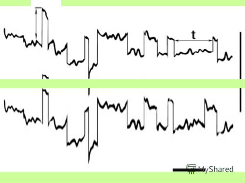 «Глаза – более точные свидетели, чем уши». Гераклит Эфесский Саккады быстрые движения глаз. Автоматия саккад – свойство глазодвигательного аппарата совершать непроизвольные быстрые движения глаз в определённом ритме.