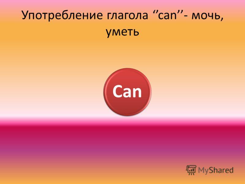 Употребление глагола can- мочь, уметь Can