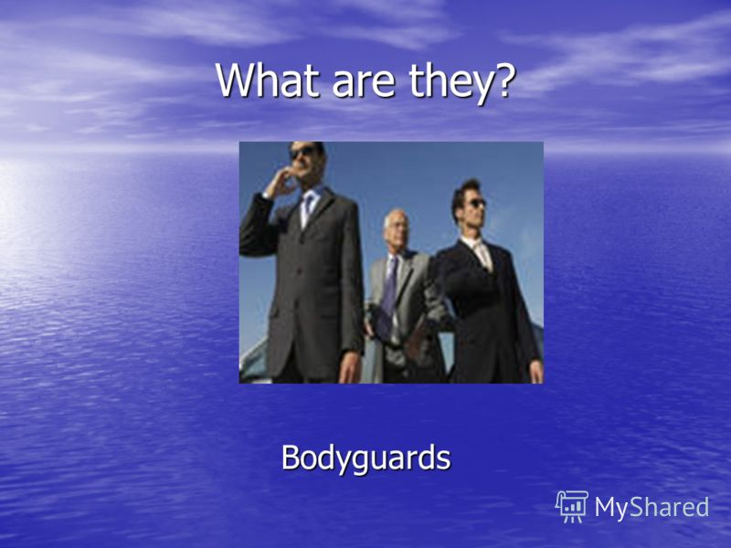 What are they? Bodyguards