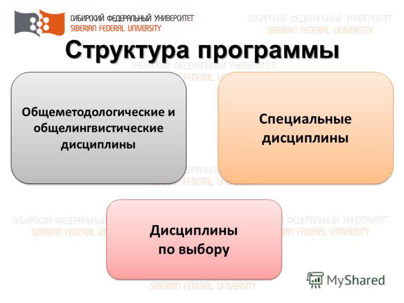 Структура программы Общеметодологические и общелингвистические дисциплины Специальные дисциплины Дисциплины по выбору Дисциплины по выбору