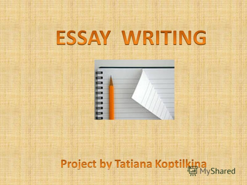 Essay Writing Program