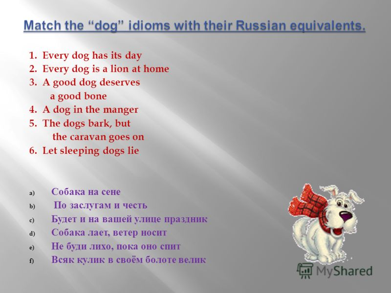 1. Every dog has its day 2. Every dog is a lion at home 3. A good dog deserves a good bone 4. A dog in the manger 5. The dogs bark, but the caravan goes on 6. Let sleeping dogs lie a) Собака на сене b) По заслугам и честь c) Будет и на вашей улице пр