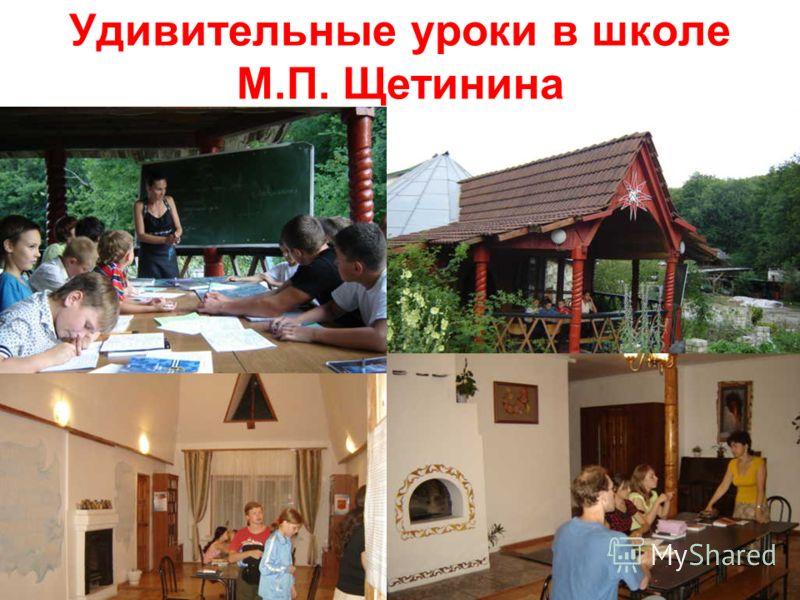 Удивительные уроки в школе М.П. Щетинина