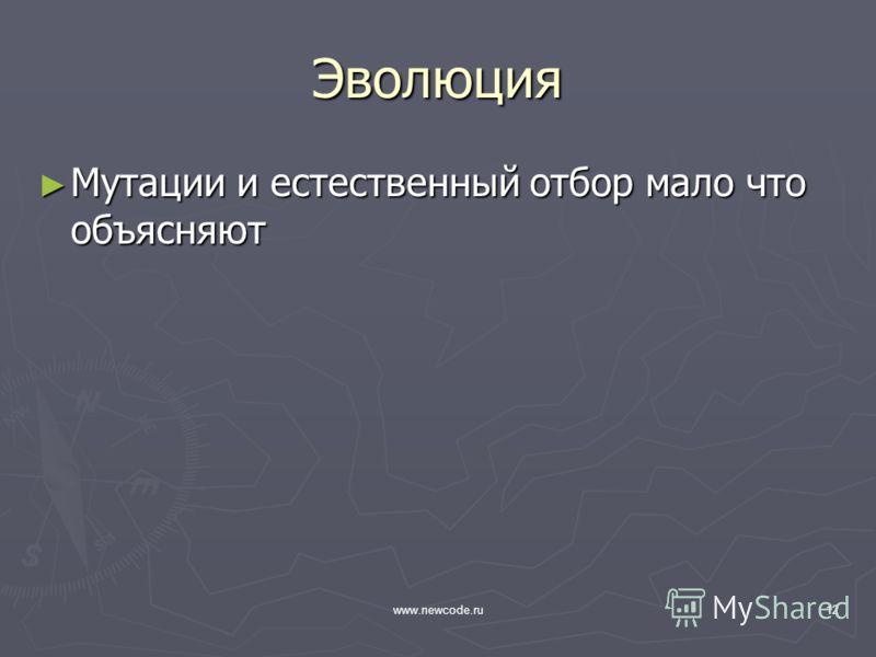 www.newcode.ru12 Эволюция Мутации и естественный отбор мало что объясняют Мутации и естественный отбор мало что объясняют