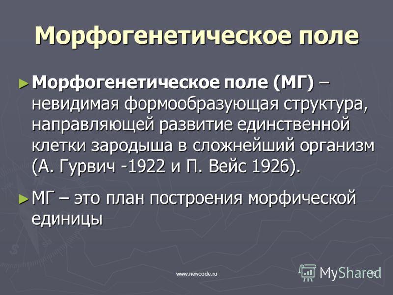 www.newcode.ru19 Морфогенетическое поле Морфогенетическое поле (МГ) – невидимая формообразующая структура, направляющей развитие единственной клетки зародыша в сложнейший организм (А. Гурвич -1922 и П. Вейс 1926). Морфогенетическое поле (МГ) – невиди