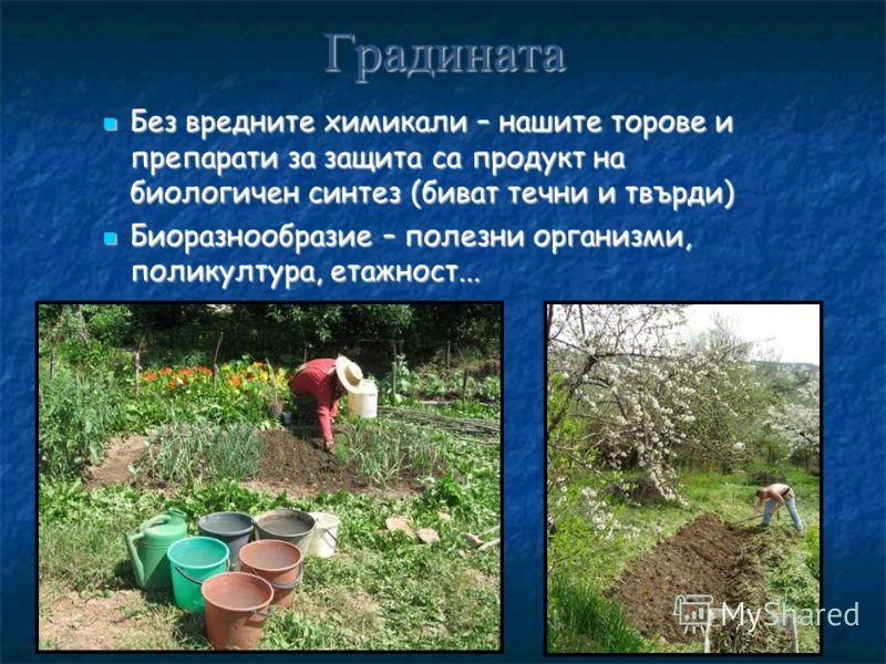 Градината Без вредните химикали – нашите торове и препарати за защита са продукт на биологичен синтез (биват течни и твърди) Без вредните химикали – нашите торове и препарати за защита са продукт на биологичен синтез (биват течни и твърди) Биоразнооб