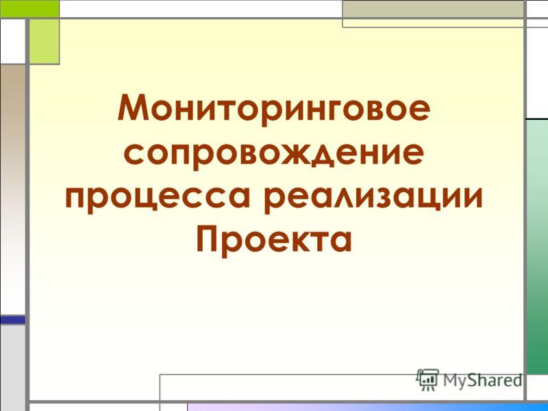 Мониторинговое сопровождение процесса реализации Проекта