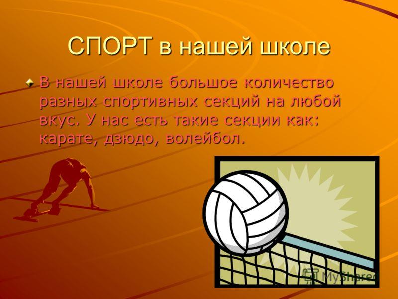 СПОРТ в нашей школе В нашей школе большое количество разных спортивных секций на любой вкус. У нас есть такие секции как: карате, дзюдо, волейбол.