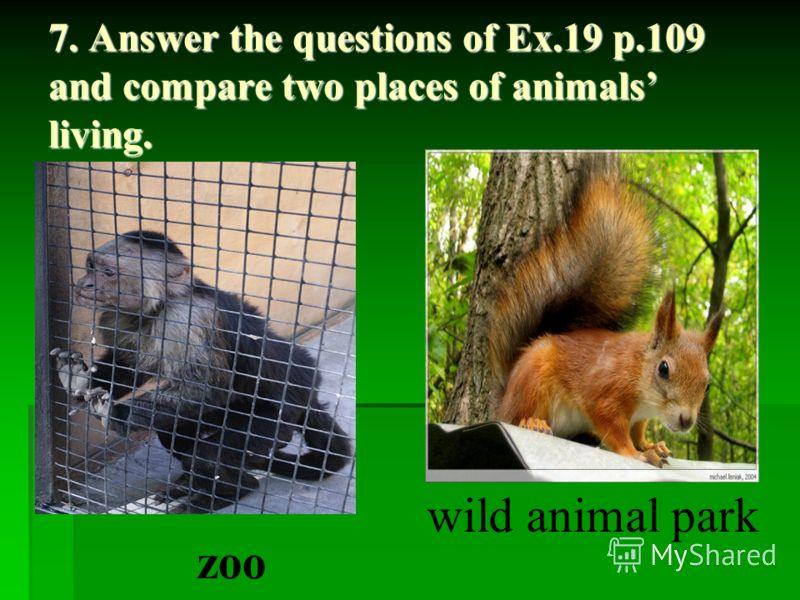 7. Answer the questions of Ex.19 p.109 and compare two places of animals living. zoo wild animal park