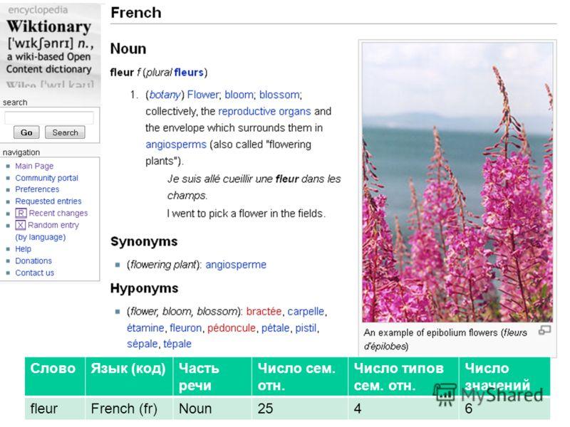 Словарная статья (фрагмент) СловоЯзык (код)Часть речи Число сем. отн. Число типов сем. отн. Число значений fleurFrench (fr)Noun2546