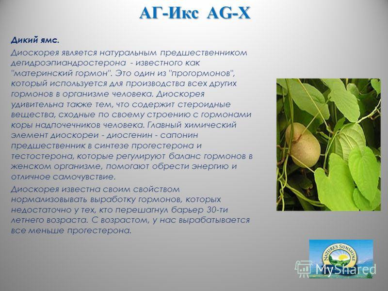 АГ-Икс AG-X Дикий ямс. Диоскорея является натуральным предшественником дегидроэпиандростерона - известного как
