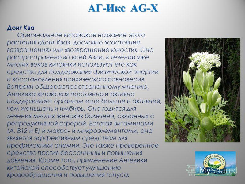 АГ-Икс AG-X Донг Ква Оригинальное китайское название этого растения «Донг-Ква», дословно «состояние возвращения» или «возвращение юности». Оно распространено во всей Азии, в течении уже многих веков китаянки используют его как средство для поддержани