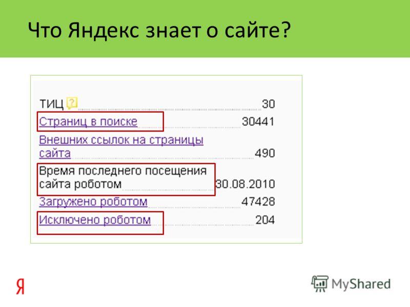 Что Яндекс знает о сайте?