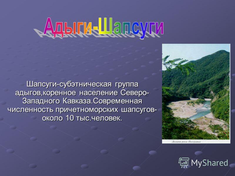 Шапсуги-субэтническая группа адыгов,коренное население Северо- Западного Кавказа.Современная численность причетноморских шапсугов- около 10 тыс.человек.