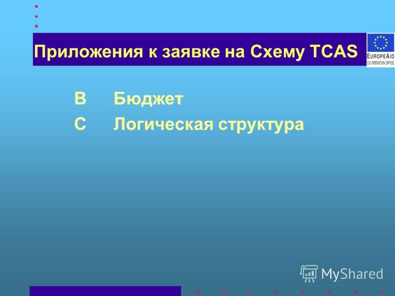 Приложения к заявке на Схему TCAS BБюджет CЛогическая структура