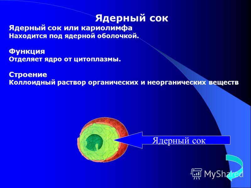 Ядерный сок Ядерный сок или кариолимфа Находится под ядерной оболочкой. Функция Отделяет ядро от цитоплазмы. Строение Коллоидный раствор органических и неорганических веществ Ядерный сок