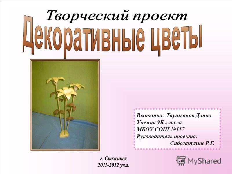 Выполнил: Таушканов Данил Ученик 9Б класса МБОУ СОШ 117 Руководитель проекта: Сибогатулин Р.Г.