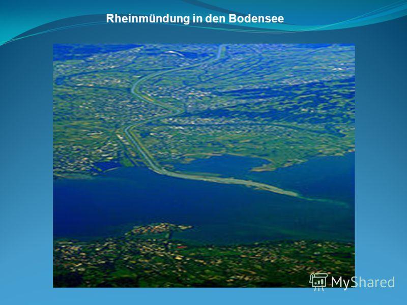 Rheinmündung in den Bodensee