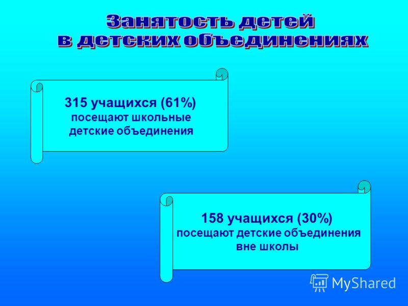 315 учащихся (61%) посещают школьные детские объединения 158 учащихся (30%) посещают детские объединения вне школы