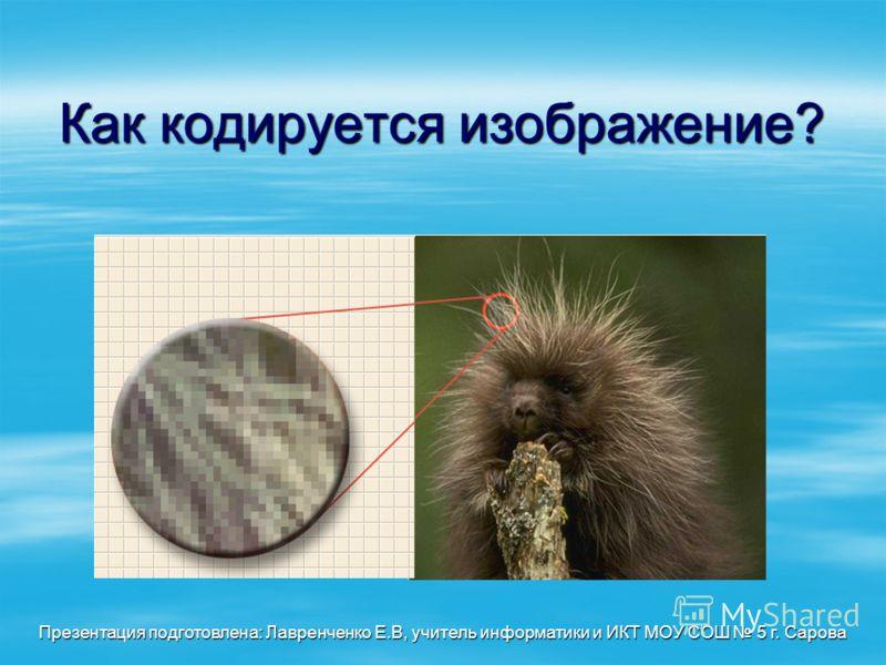 Как кодируется изображение? Презентация подготовлена: Лавренченко Е.В, учитель информатики и ИКТ МОУ СОШ 5 г. Сарова