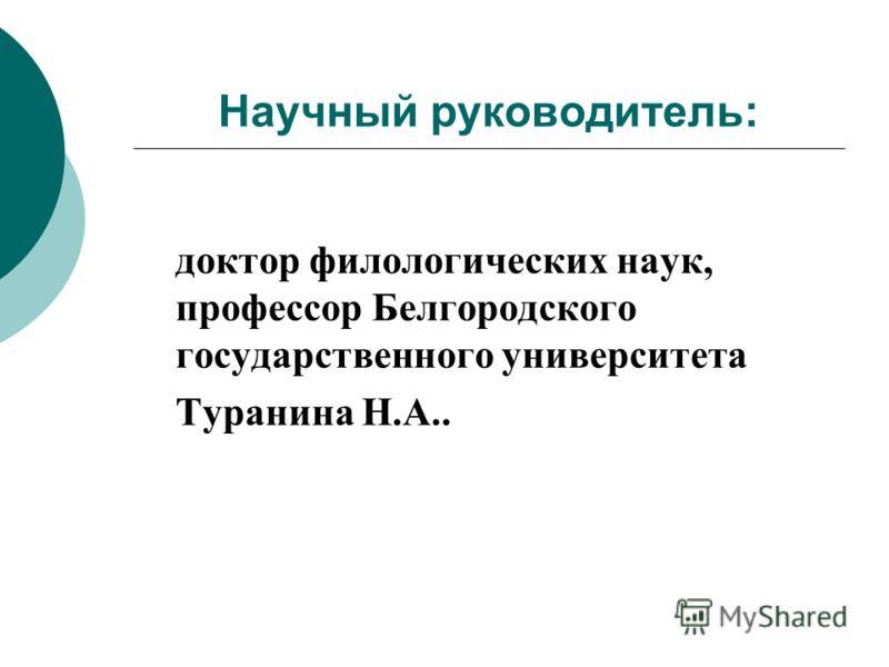 Научный руководитель: доктор филологических наук, профессор Белгородского государственного университета Туранина Н.А..