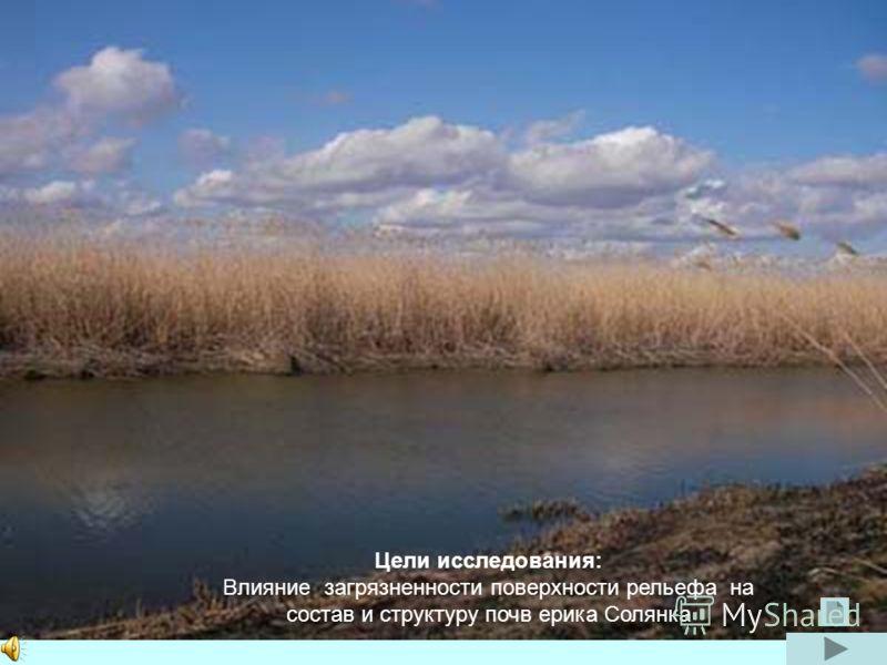 Цели исследования: Влияние загрязненности поверхности рельефа на состав и структуру почв ерика Солянка